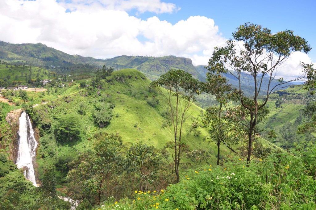Your tea is grown in the Western Highlands of Sri Lanka with outstanding beauty.