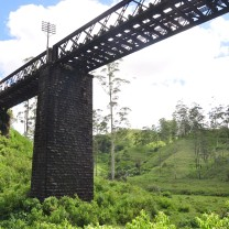 Colombo-Badulla train goes through this bridge cutting St Andrews tea estate in half!