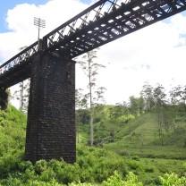 Colombo-Badulla train goes through this bridge cutting St Andrews tea estate in half!